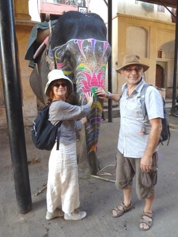 Les éléphants sont des animaux attachants. Nous avons pu entrer  dans leur étable.