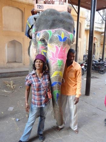 Les éléphants aiment les câlins.