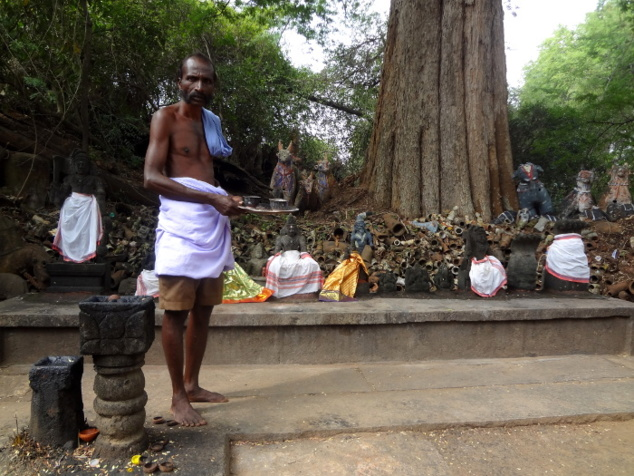 Au milieu d'un bois sacrée, au bout de l'allée bordée de chevaux, le sanctuaire où Aiyanaar est vénéré.