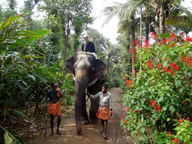 Au Kérala, j'ai commencé par passer mon permis de conduire ... un éléphant.