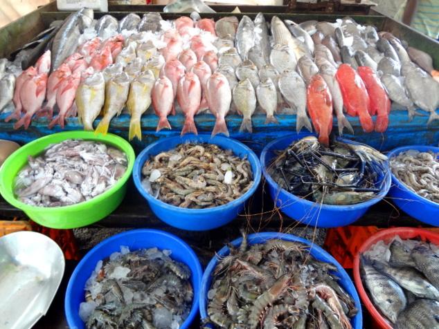 Le produit d'une pêche fructueuse.