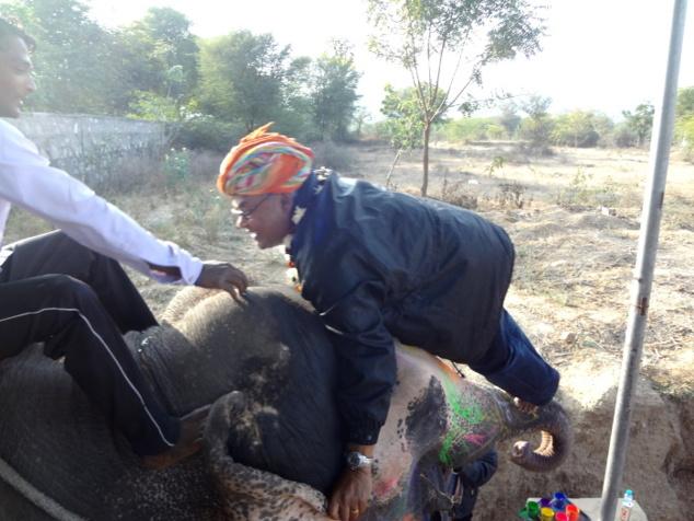 Puis vint la leçon pour monter sur le dos de l'éléphant. Jean s'en est bien sorti jusqu'au moment où ...