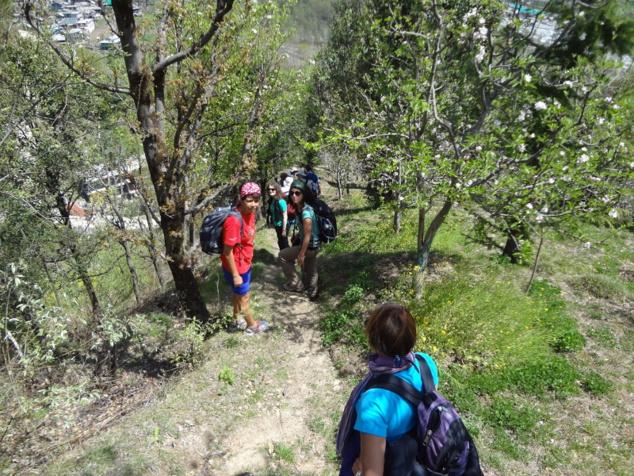Autre randonnée parmi les vergers en fleurs