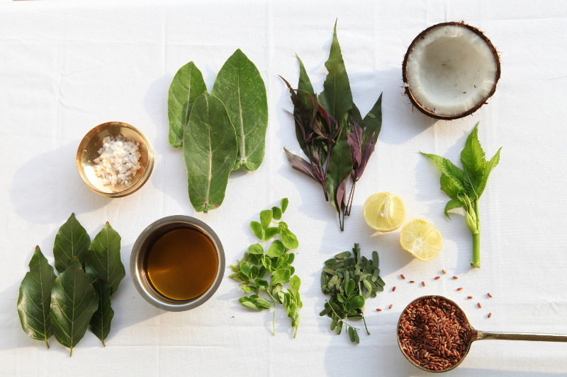 Quelques ingrédients utilisés au cours de la cure
