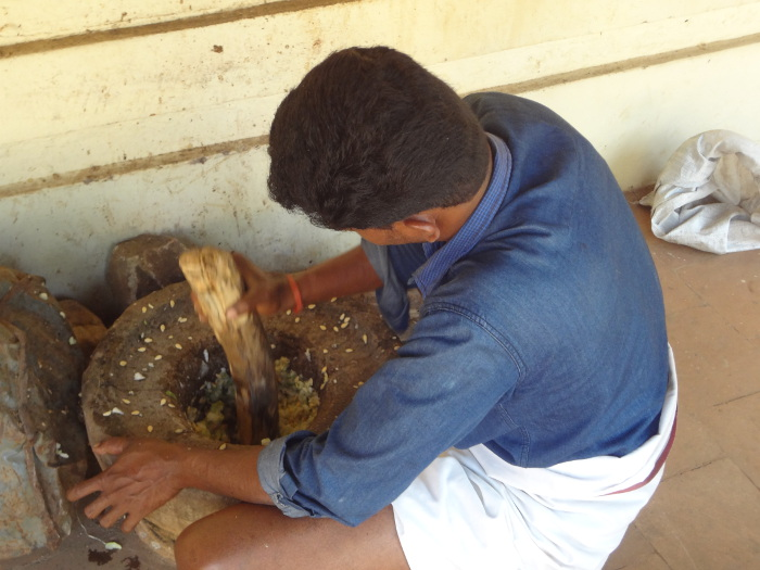 Préparation de remèdes pour les éléphants.
